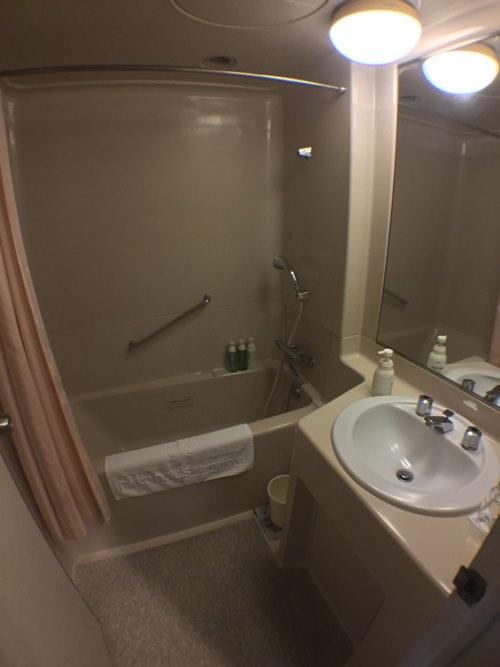 ห้องน้ำในห้องพักNikko Hotel Narita