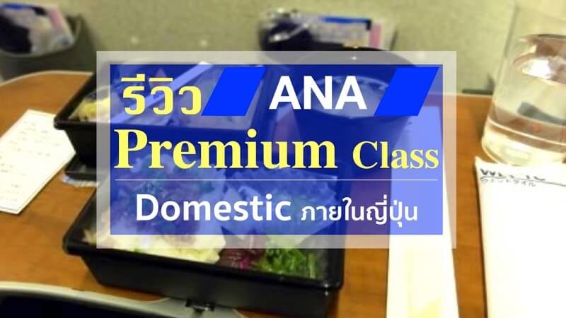 ana domestic