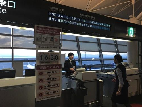 เที่ยวบินภายในประเทศ JAL