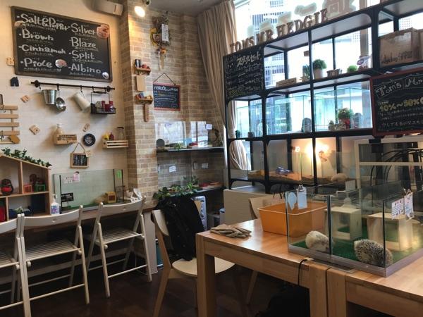 ร้านคาเฟ่สัตว์ในเกียวโต แนะนำ
