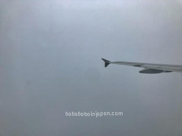 เครื่องบินเจอพายุ