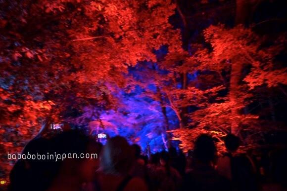 เทศกาลเกียวโต