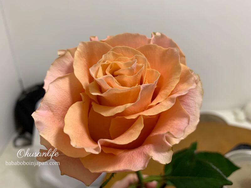 ยืดอายุดอกไม้